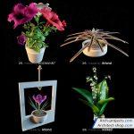 مدل سه بعدی گل خانگی