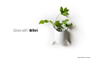طراحی خلاقانه گلدان عمودی LIVI