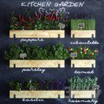 مدل سه بعدی گیاهان آپارتمانی