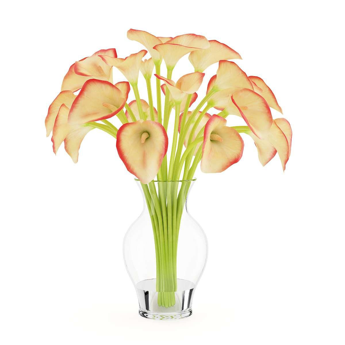 مدل سه بعدی گل های رومیزی