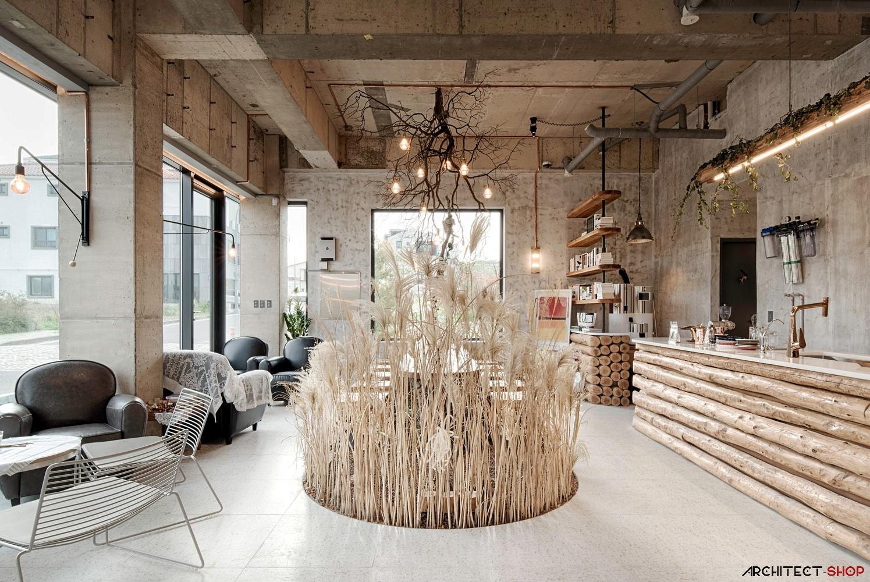 طراحی کافی شاپ با الهام از جزیره Jeju - cafe jeju 2 1