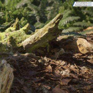 مدل سه بعدی جنگل