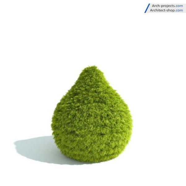 آبجکت گیاهان طراحی فضای سبز