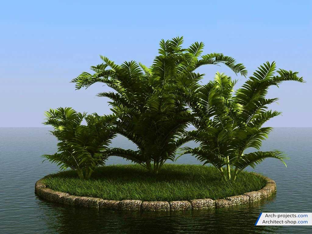 آبجکت درخت نخل