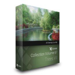 مدل سه بعدی درخت زینتی از CGAxis