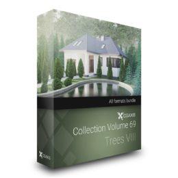 مدل سه بعدی درخت کاج از CGAxis