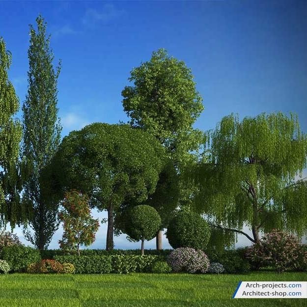 آبجکت درخت فضای سبز از 3DMentor