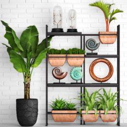 دانلود مجموعه آبجکت گل طبیعی و گلدان از Pro 3DSky