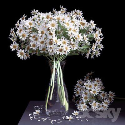 مدل سه بعدی گل های زینتی