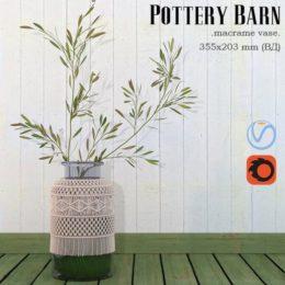 دانلود مدل سه بعدی گیاهان زینتی و آپارتمانی از Pro 3DSky