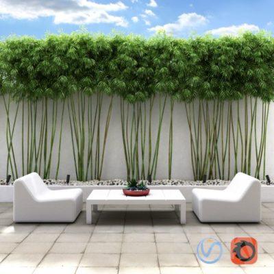 مدل سه بعدی درختچه تزئینی