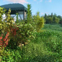 دانلود مجموعه آبجکت گیاهان کوهستانی از R&D Group