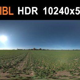 دانلود تصاویر HDRI محیط جنگلی